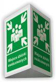 BD005 - Miejsce zbiórki ewakuowanych 3D - 25x31 cm - znak ewakuacyjny, przestrzenny 3D - Obrót wyrobami pirotechnicznymi – obowiązki pracodawcy