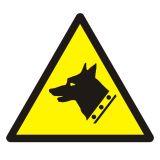 GDW013 - Ostrzeżenie przed złym psem - znak bhp ostrzegający - Barwy i kształty znaków bezpieczeństwa