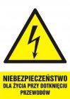 HA007 - Niebezpieczeństwo dla życia przy dotknięciu przewodów - znak sieci elektrycznych
