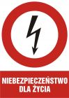 HC001 - Niebezpieczeństwo dla życia - znak sieci elektrycznych