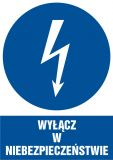 HE001 - Wyłącz w niebezpieczeństwie - znak sieci elektrycznych - Norma PN-E-08501:1998