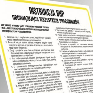 IAO61 - Instrukcja BHP w sprawie zasad płetwonurkowania
