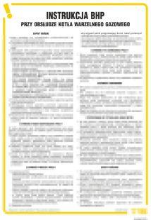 Instrukcja BHP przy obsłudze kotła warzelnego gazowego - IAO04
