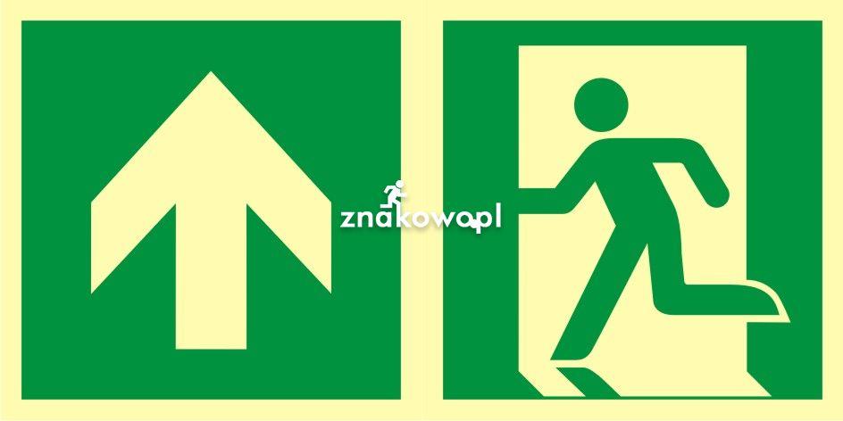 Kierunek do wyjścia ewakuacyjnego - w górę (lewostronny) - znak ewakuacyjny - AAE100 - Oznakowanie dróg ewakuacyjnych – prawidłowe oznaczenia ewakuacyjne