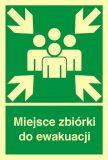 Miejsce zbiórki do ewakuacji - znak ewakuacyjny - AB002 - Oznakowanie zagrożeń w zakładzie pracy i drogi ewakuacyjne
