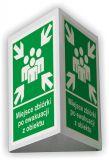 Miejsce zbiórki po ewakuacji z obiektu 3D - 25x31 cm - znak ewakuacyjny, przestrzenny 3D - Zasady rozmieszczenia znaków ewakuacyjnych