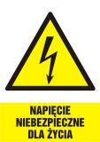 Napięcie niebezpieczne dla życia - znak sieci elektrycznych - HA002 - Norma PN-E-08501:1998