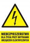 Niebezpieczeństwo dla życia przy dotykaniu urządzeń elektrycznych - znak sieci elektrycznych - HA006