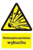 Niebezpieczeństwo wybuchu - materiały wybuchowe - znak przeciwpożarowy ppoż - BC004 - Stacja benzynowa – jak powinna być oznaczona?