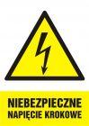 Niebezpieczne napięcie krokowe - znak sieci elektrycznych - HA014