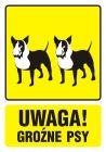 PA035 - Uwaga! Groźne psy 1 - znak informacyjny
