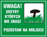 Uwaga! Grzyby, których nie znasz pozostaw na miejscu - znak, lasy - OB036 - Oznakowanie w lesie