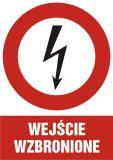 Wejście wzbronione - znak sieci elektrycznych - HC004 - Norma PN-E-08501:1998