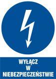 Wyłącz w niebezpieczeństwie - znak sieci elektrycznych - HE001 - Norma PN-E-08501:1998