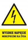 Wysokie napięcie niebezpieczne dla życia - znak sieci elektrycznych - HA004